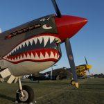 Albert Dyer Rudy Frasca P-40